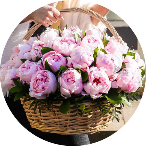 Заказать цветы пионы в москве — photo 7